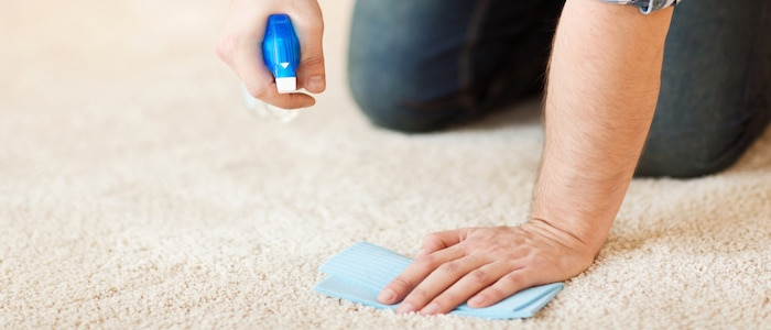 blutflecken entfernen sofa
