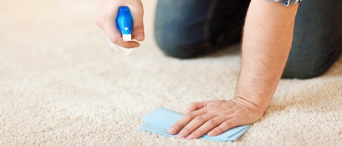 rotweinflecken entfernen teppich