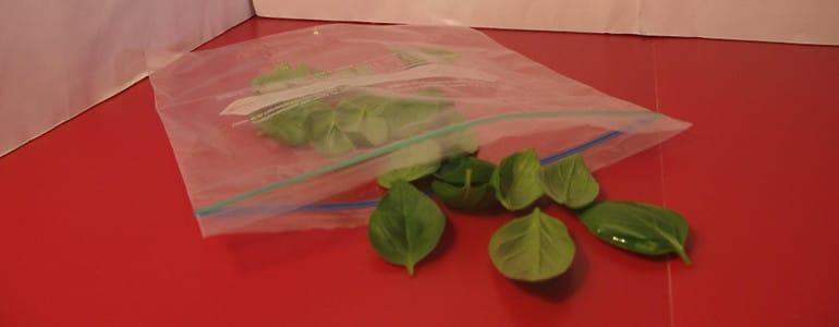 Basilikum in einen Gefrierbeutel legen