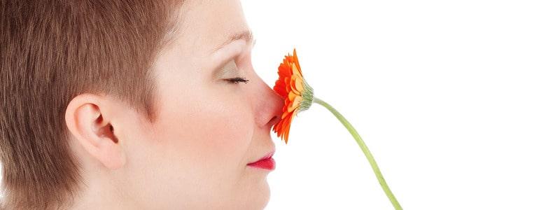 Gerueche neutralisieren