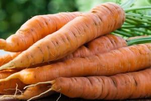 Karottenfleck entfernen