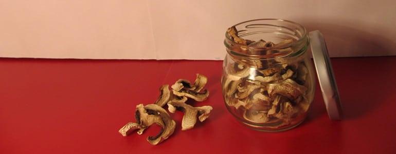getrocknete Pilze lagern
