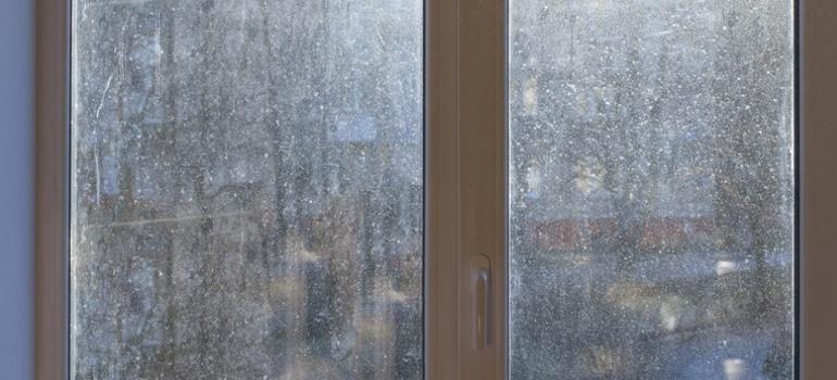 Prowin Window Wonder Erfahrungen